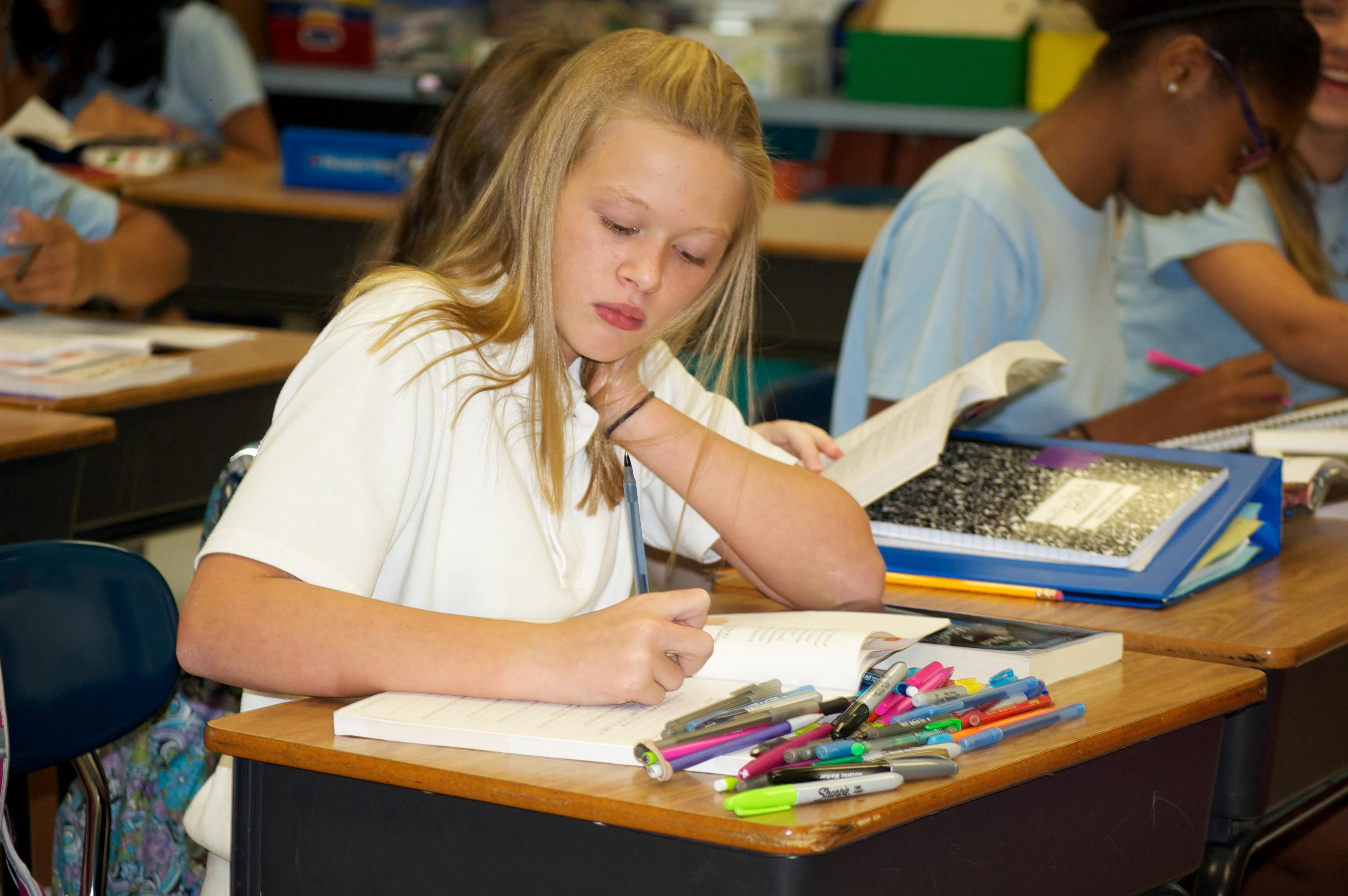 Assessments - Miscellaneous - St  Louis Catholic School